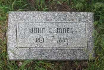 JONES, JOHN - Saline County, Nebraska | JOHN JONES - Nebraska Gravestone Photos