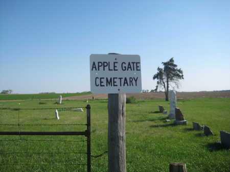 JONES, MARY S. - Saline County, Nebraska | MARY S. JONES - Nebraska Gravestone Photos
