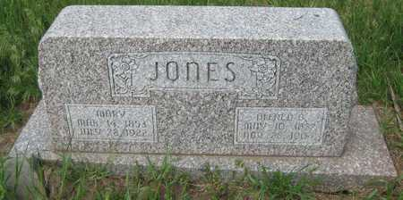 JONES, ALFRED BRONSON - Saline County, Nebraska | ALFRED BRONSON JONES - Nebraska Gravestone Photos
