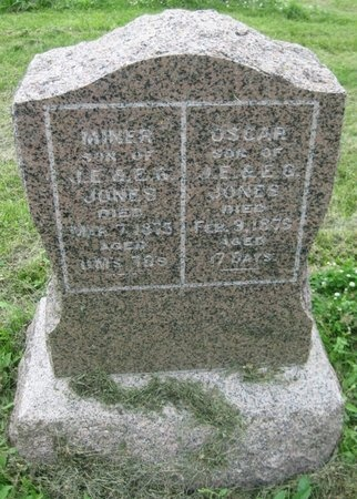 JONES, MINER - Saline County, Nebraska | MINER JONES - Nebraska Gravestone Photos