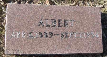 KLASEK, ALBERT - Saline County, Nebraska | ALBERT KLASEK - Nebraska Gravestone Photos