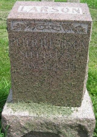 LARSON, PETER H. - Saline County, Nebraska   PETER H. LARSON - Nebraska Gravestone Photos