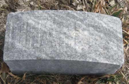 "LEWIS, CHARLES ""CHARLEY"" - Saline County, Nebraska | CHARLES ""CHARLEY"" LEWIS - Nebraska Gravestone Photos"