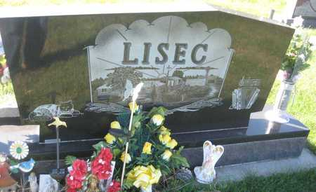 LISEC, DAWN RENAE - Saline County, Nebraska | DAWN RENAE LISEC - Nebraska Gravestone Photos