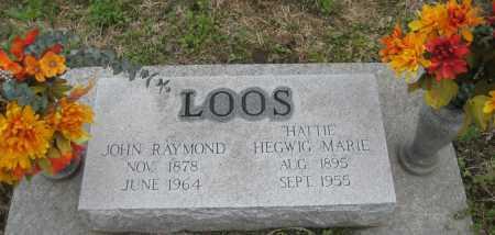 "LOOS, HEGWIG MARIE ""HATTIE"" - Saline County, Nebraska | HEGWIG MARIE ""HATTIE"" LOOS - Nebraska Gravestone Photos"
