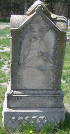 MAGER, MARY - Saline County, Nebraska | MARY MAGER - Nebraska Gravestone Photos