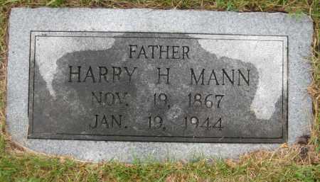 MANN, HARRY H. - Saline County, Nebraska   HARRY H. MANN - Nebraska Gravestone Photos