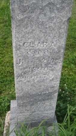 MASON, CLARA FERN - Saline County, Nebraska | CLARA FERN MASON - Nebraska Gravestone Photos