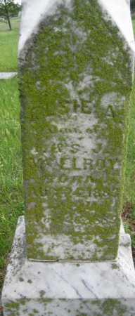 MCELROY, ELSIE A. - Saline County, Nebraska | ELSIE A. MCELROY - Nebraska Gravestone Photos