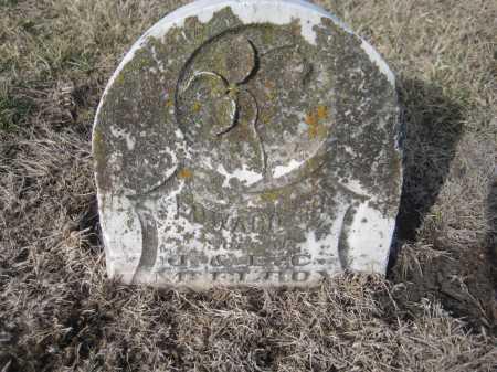 MCELROY, EDWARD S. H. - Saline County, Nebraska | EDWARD S. H. MCELROY - Nebraska Gravestone Photos