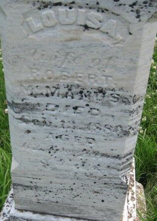 MCMANUS, LOUISA - Saline County, Nebraska   LOUISA MCMANUS - Nebraska Gravestone Photos
