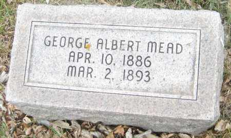 MEAD, GEORGE ALBERT - Saline County, Nebraska | GEORGE ALBERT MEAD - Nebraska Gravestone Photos