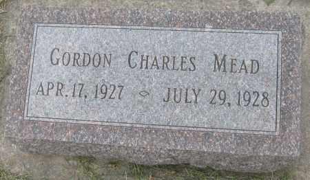 MEAD, GORDON CHARLES - Saline County, Nebraska   GORDON CHARLES MEAD - Nebraska Gravestone Photos