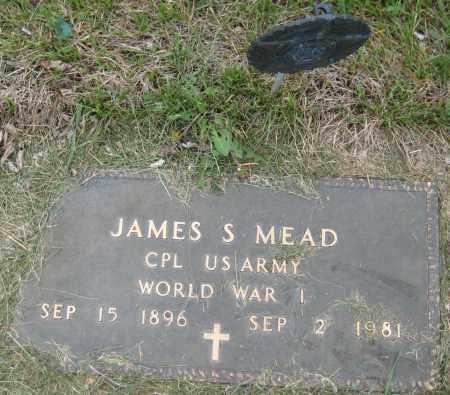 MEAD, JAMES S. - Saline County, Nebraska | JAMES S. MEAD - Nebraska Gravestone Photos