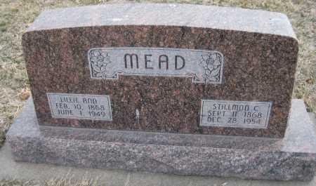 MEAD, LILLIE ANA - Saline County, Nebraska   LILLIE ANA MEAD - Nebraska Gravestone Photos