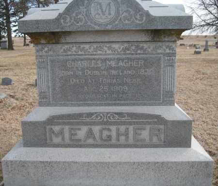 MEAGHER, CHARLES - Saline County, Nebraska | CHARLES MEAGHER - Nebraska Gravestone Photos