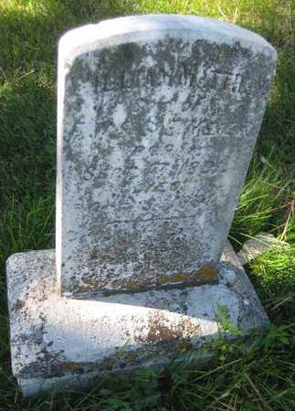 MEIER, WILLIAM MATTHEW - Saline County, Nebraska | WILLIAM MATTHEW MEIER - Nebraska Gravestone Photos