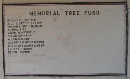 *MEMORIAL, TREE FUND - Saline County, Nebraska | TREE FUND *MEMORIAL - Nebraska Gravestone Photos