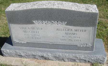 MITCHELL, VIOLA - Saline County, Nebraska   VIOLA MITCHELL - Nebraska Gravestone Photos