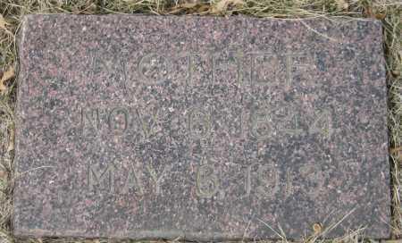 NEEL, MOTHER - Saline County, Nebraska | MOTHER NEEL - Nebraska Gravestone Photos