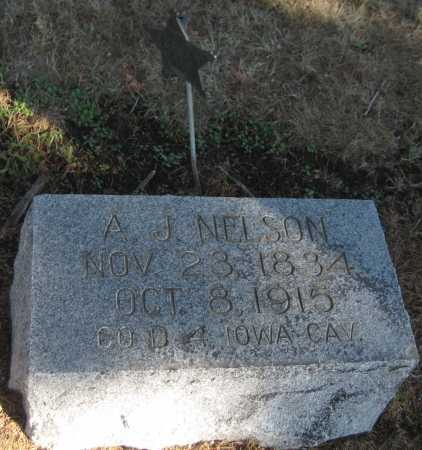 NELSON, A. J. - Saline County, Nebraska | A. J. NELSON - Nebraska Gravestone Photos