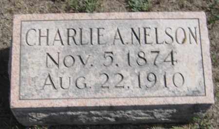 NELSON, CHARLIE A. - Saline County, Nebraska | CHARLIE A. NELSON - Nebraska Gravestone Photos