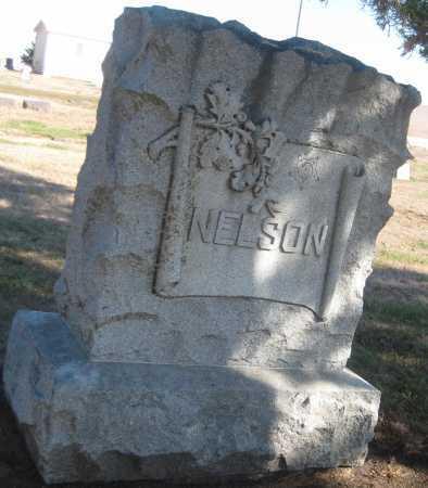 NELSON, FAMILY MONUMENT - Saline County, Nebraska | FAMILY MONUMENT NELSON - Nebraska Gravestone Photos