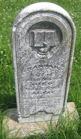 NELSON, HANNAH - Saline County, Nebraska   HANNAH NELSON - Nebraska Gravestone Photos