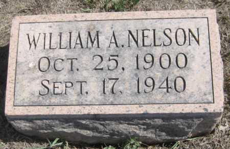 NELSON, WILLIAM A. - Saline County, Nebraska   WILLIAM A. NELSON - Nebraska Gravestone Photos
