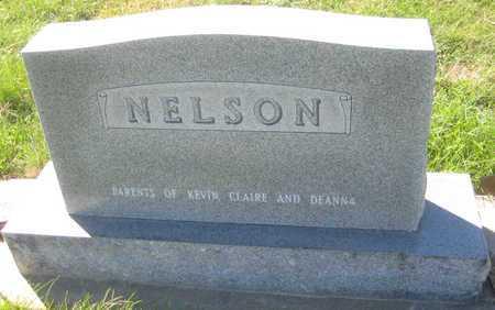 NELSON, W. STEWART - Saline County, Nebraska | W. STEWART NELSON - Nebraska Gravestone Photos