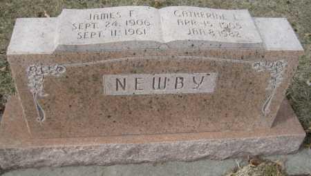 NEWBY, JAMES F. - Saline County, Nebraska | JAMES F. NEWBY - Nebraska Gravestone Photos