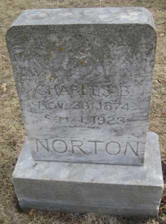 NORTON, CHARLES B. - Saline County, Nebraska | CHARLES B. NORTON - Nebraska Gravestone Photos