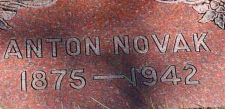 NOVAK, ANTON - Saline County, Nebraska | ANTON NOVAK - Nebraska Gravestone Photos