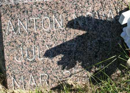 NOVAK, ANTON - Saline County, Nebraska   ANTON NOVAK - Nebraska Gravestone Photos