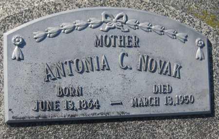 NOVAK, ANTONIA C. - Saline County, Nebraska | ANTONIA C. NOVAK - Nebraska Gravestone Photos