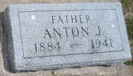 NOVAK, ANTON J. - Saline County, Nebraska | ANTON J. NOVAK - Nebraska Gravestone Photos