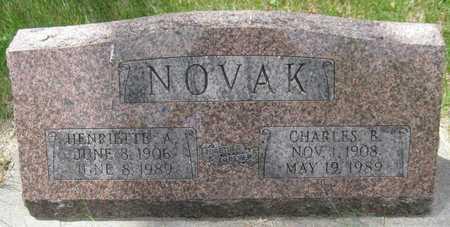 NOVAK, HENRIETTE A. - Saline County, Nebraska | HENRIETTE A. NOVAK - Nebraska Gravestone Photos