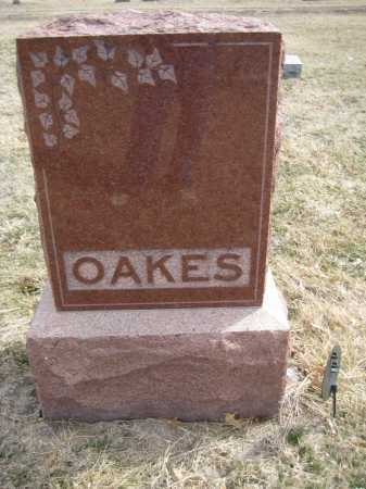 OAKES, FAMILY MONUMENT - Saline County, Nebraska | FAMILY MONUMENT OAKES - Nebraska Gravestone Photos