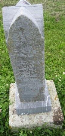 OTTERSON, LUCY ANN - Saline County, Nebraska | LUCY ANN OTTERSON - Nebraska Gravestone Photos