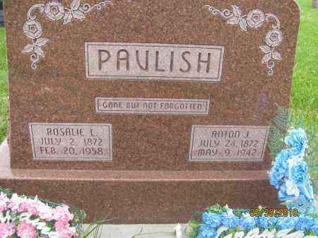 BURGESS PAVLISH, ROSALIE LORENE - Saline County, Nebraska | ROSALIE LORENE BURGESS PAVLISH - Nebraska Gravestone Photos