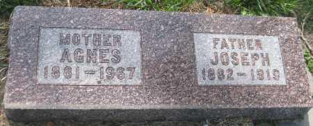 PAWLISH (PAVLISH), AGNES - Saline County, Nebraska | AGNES PAWLISH (PAVLISH) - Nebraska Gravestone Photos
