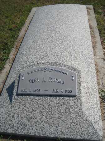 PIVONKA, OLGA A. - Saline County, Nebraska | OLGA A. PIVONKA - Nebraska Gravestone Photos