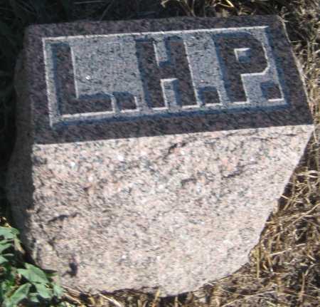 PORTER, LEVI H. - Saline County, Nebraska | LEVI H. PORTER - Nebraska Gravestone Photos