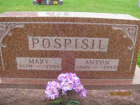 POSPISIL, MARY - Saline County, Nebraska | MARY POSPISIL - Nebraska Gravestone Photos