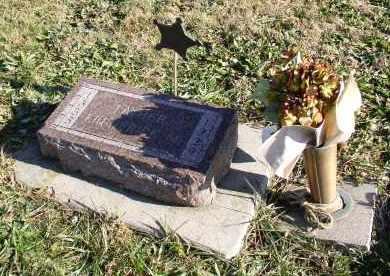 POTTER, FREDERICK M. - Saline County, Nebraska | FREDERICK M. POTTER - Nebraska Gravestone Photos