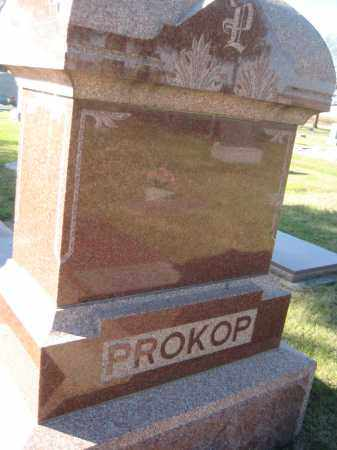 PROKOP, FAMILY MONUMENT - Saline County, Nebraska | FAMILY MONUMENT PROKOP - Nebraska Gravestone Photos