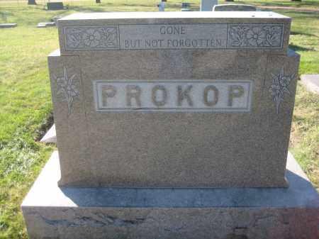 PROKOP, FAMILY MONUMENT - Saline County, Nebraska | FAMILY MONUMENT PROKOP - Nebraska Gravestone Photos
