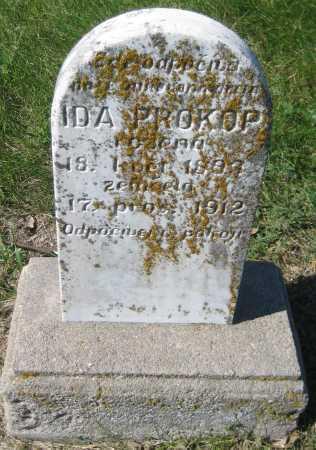 PROKOP, IDA - Saline County, Nebraska | IDA PROKOP - Nebraska Gravestone Photos