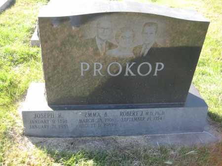 PROKOP, EMMA B. - Saline County, Nebraska | EMMA B. PROKOP - Nebraska Gravestone Photos