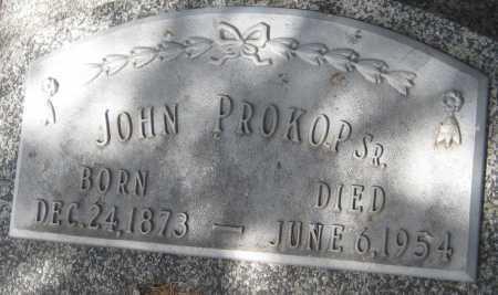 PROKOP, JOHN SR. - Saline County, Nebraska | JOHN SR. PROKOP - Nebraska Gravestone Photos
